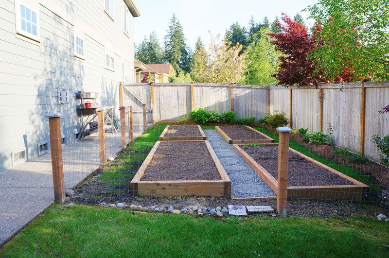 Photo About Small Vegetable Garden With Risen Beds In The Fenced Backyard  Near House.