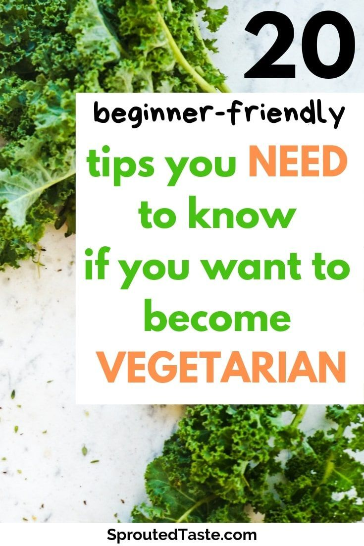 How to Become a Vegetarian 20 Tips You Need to Know Healthy vegetarian diet, Vegetarian recipes healthy, Becoming vegetarian, Vegetarian lifestyle, Vegetarian diet, Going vegetarian - How to Become a Vegetarian 20 Tips You Need to Know -