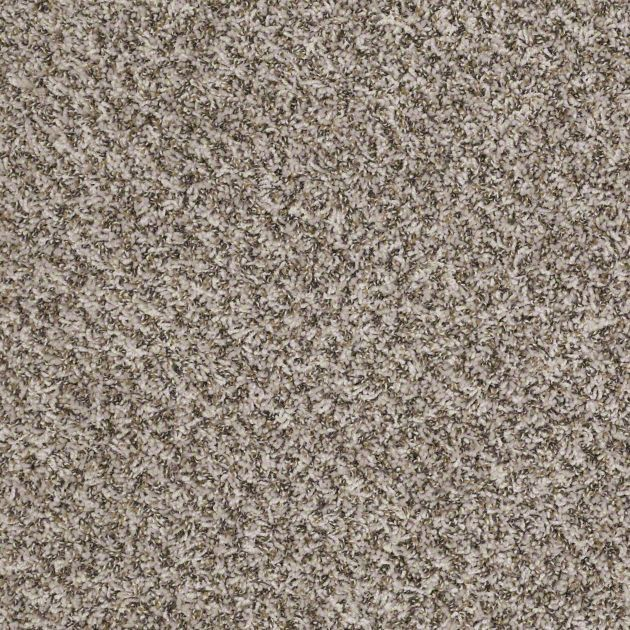 Shaw Carpets Winter White Shaw Carpet Carpet Flooring