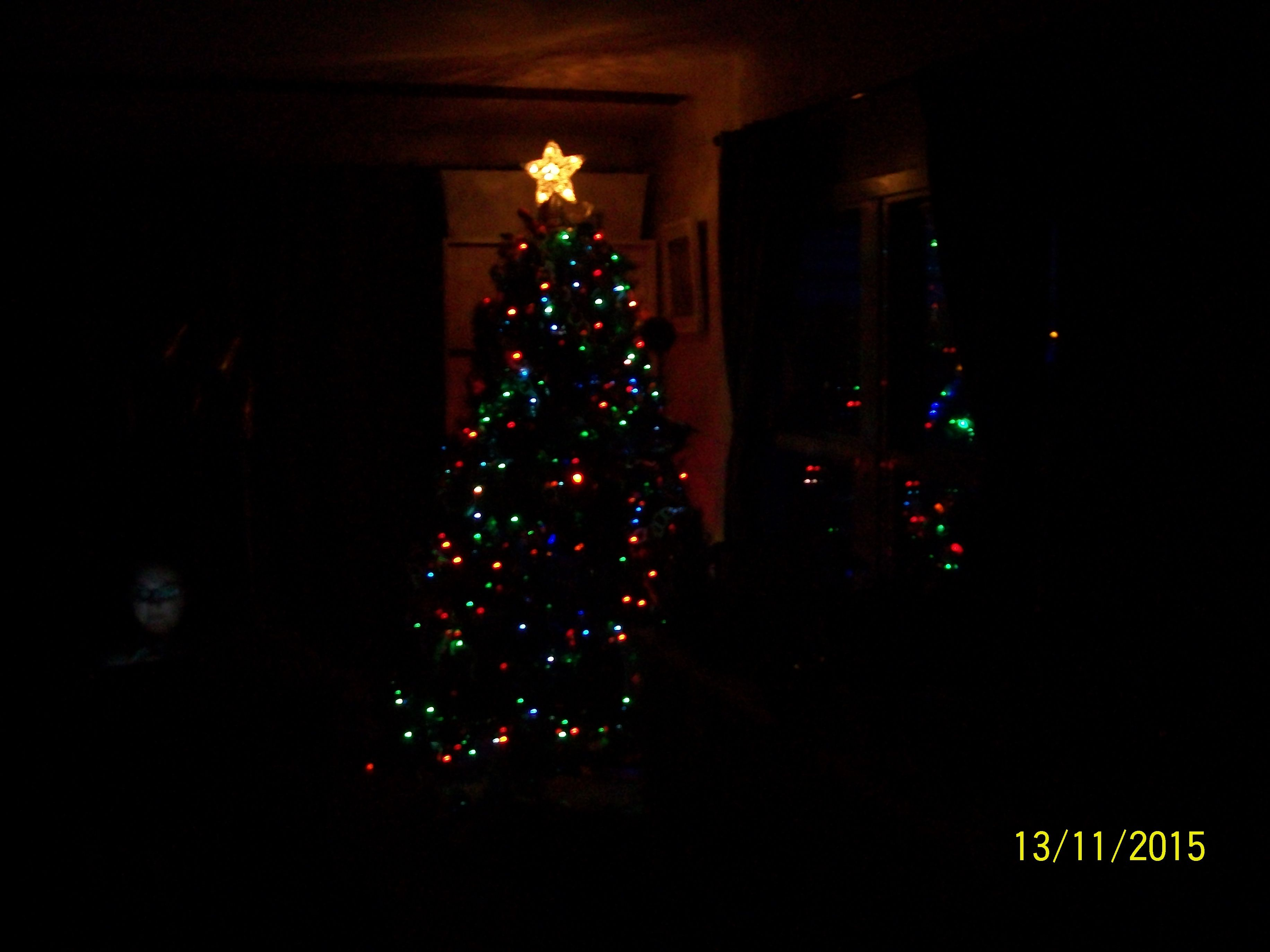 our 2015 tree