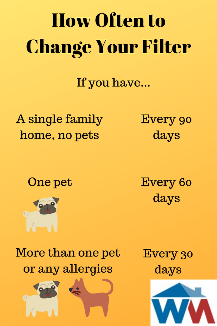 Maintaining Indoor Air Quality When You Have Pets Home