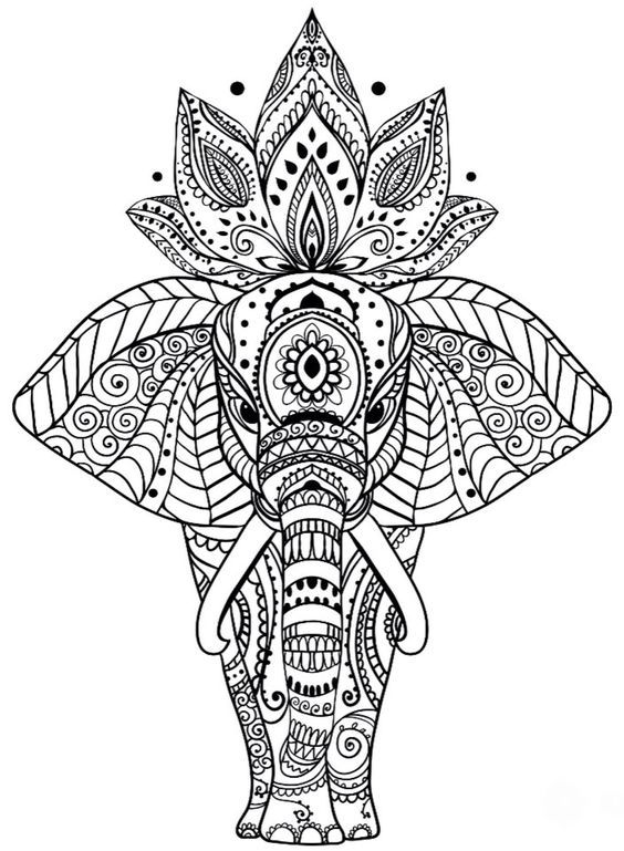 Animal Coloring Pages More Pins Like This One At Fosterginger Pinterest Coloriage Mandala Coloriage Mandala Animaux Coloriage Elephant