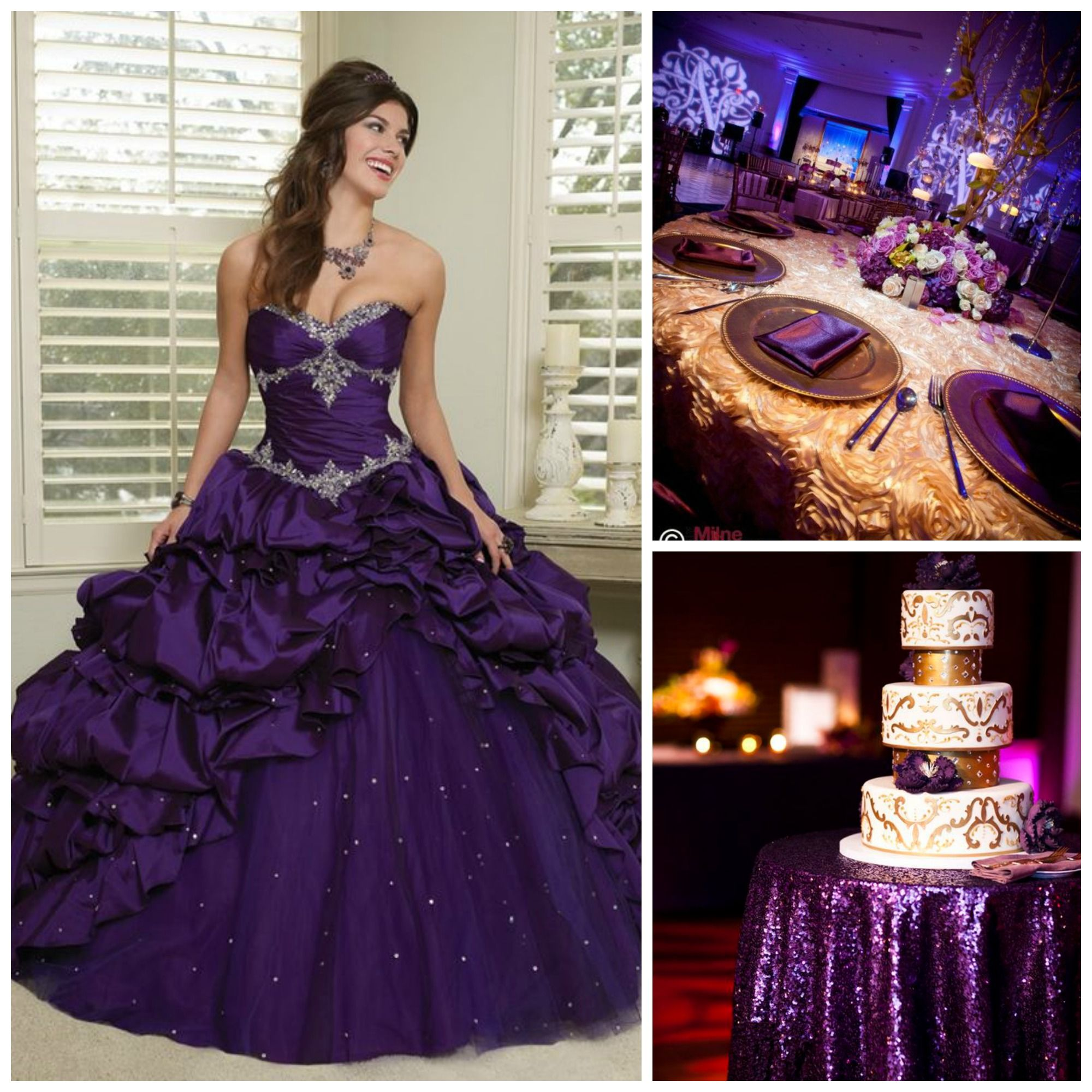 Purple Themed Quinceanera Plum Color Ideas And Gold