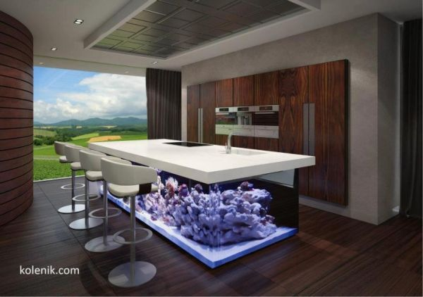 A Stunning Eat In Kitchen Table With A Coral Filled Aquarium