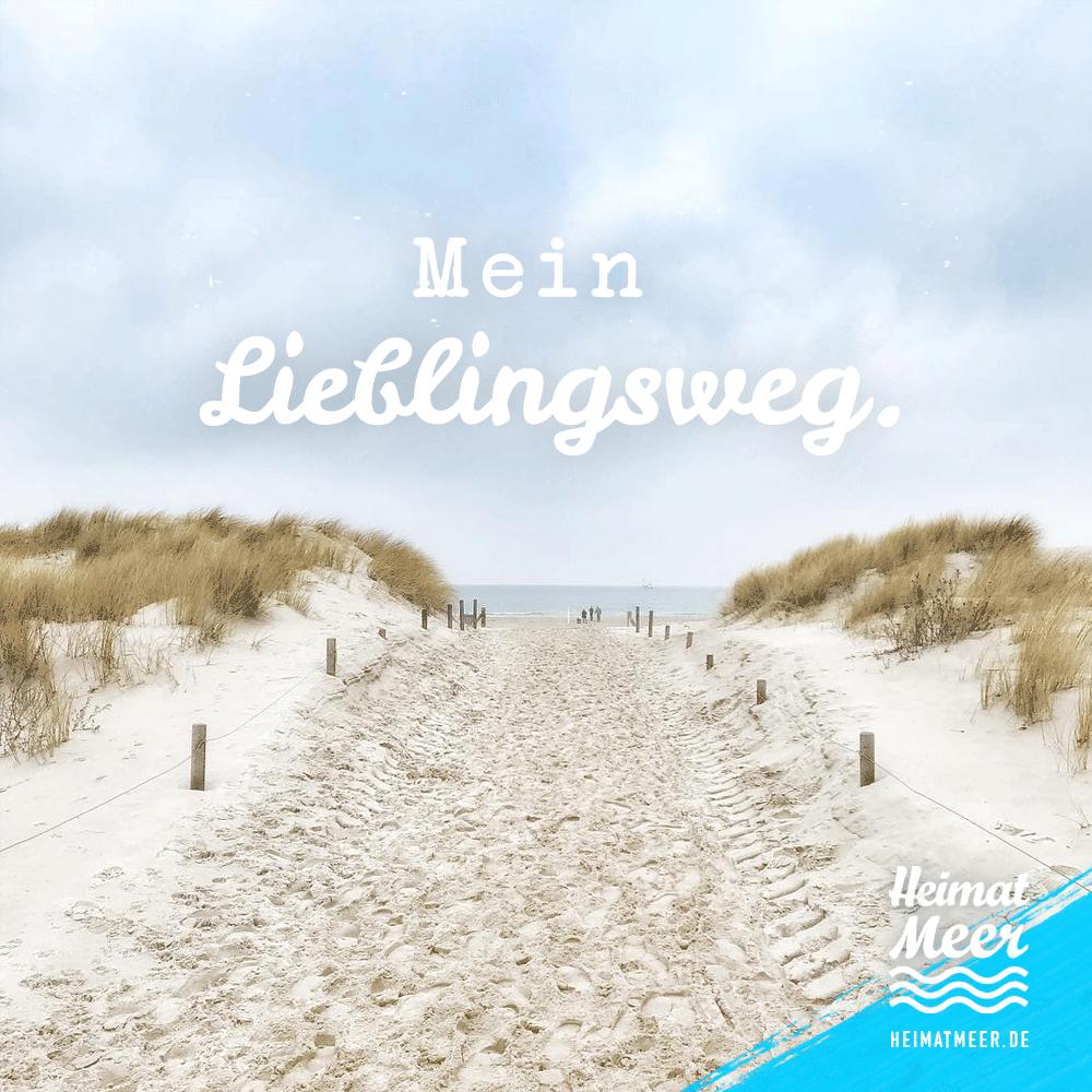 Mein Lieblingsweg Der Ans Meer Mee H R Auf Heimatmeer De Spruche Meer Strand Spruche Strand Zitate