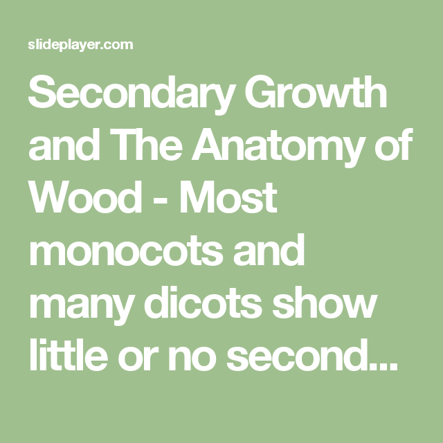 Secondary Growth And The Anatomy Of Wood Most Monocots And Many