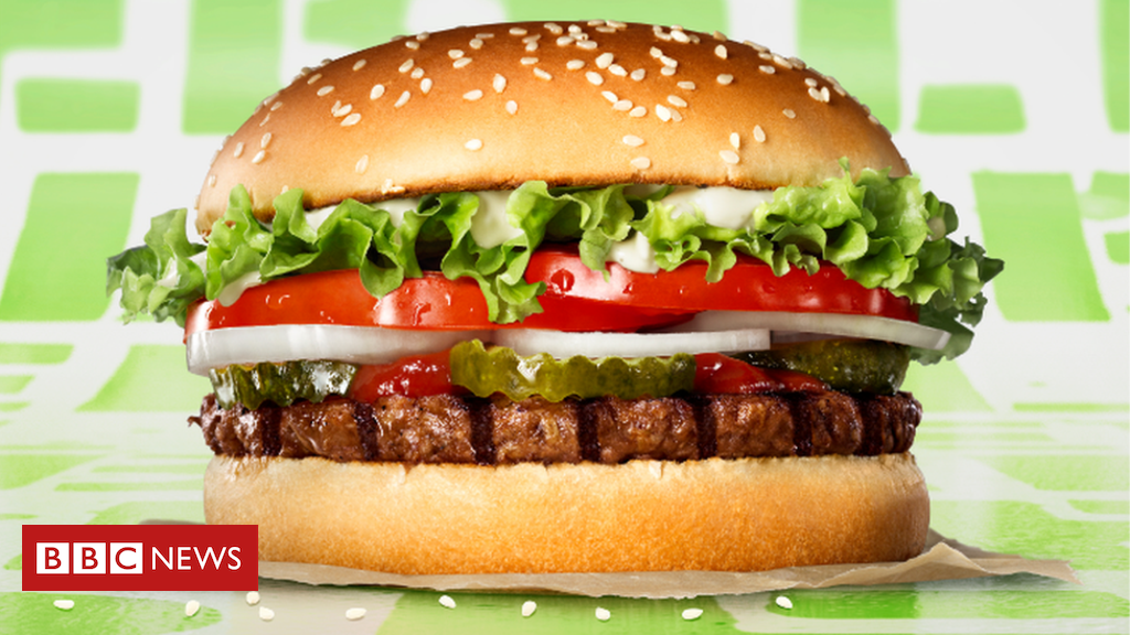 Burger King New Plant Based Burger Not For Vegans In 2020 Burger Plant Based Burgers Burger King