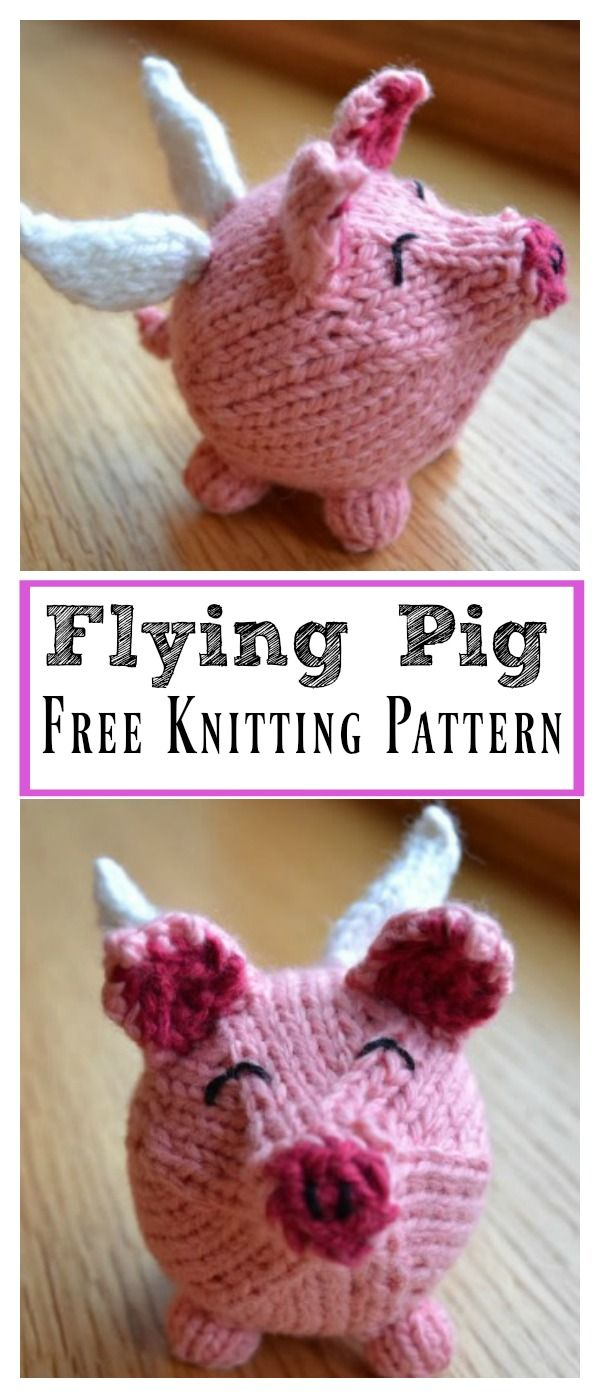 Flying Pig Free Knitting Pattern