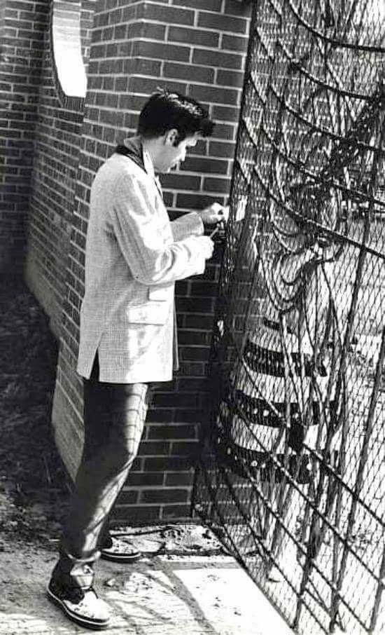 1957 ELVIS PRESLEY at GRACELAND Photo SHOOTING PISTOL AT THE GATES