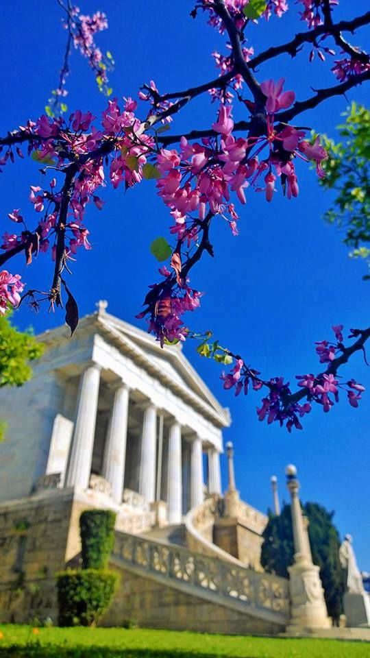 The National Library in the spring, Athens, Greece #kitsakis