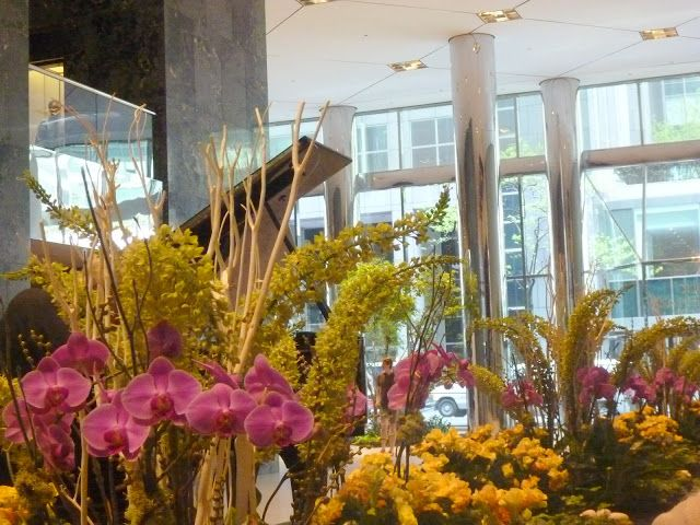 Indoor Public Atriums in New York - Lifeu0027s Search for Home