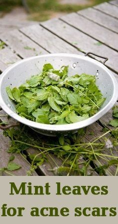 a9f467f3f901 Mint Leaves Benefits for acne scars  Let us check a super duper acne curing  mint recipe now.   naturalskincare   healthyskin ...