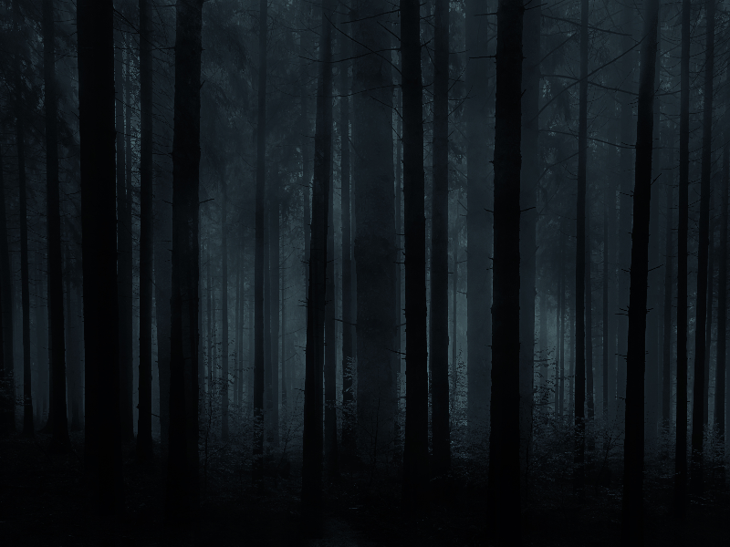 Horror Forest Background For Photoshop | textures / | Creepy