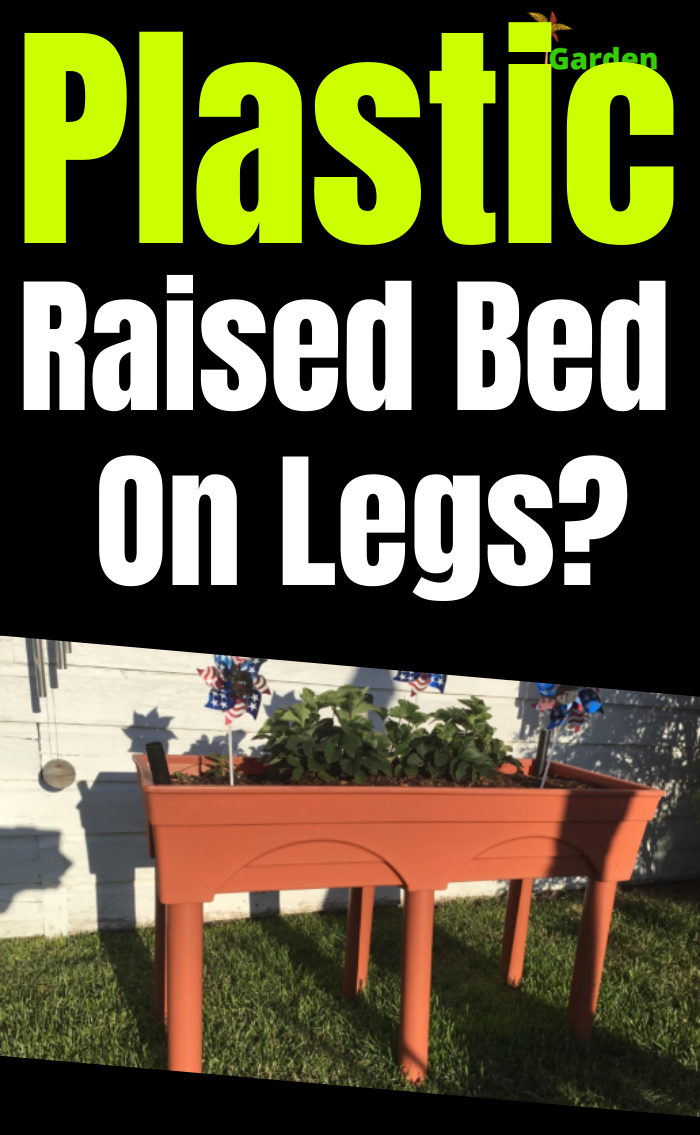 Plastic Raised Garden Beds On Legs How To And What To