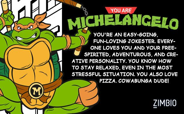 Which Teenage Mutant Ninja Turtle Character Are You Ninja Turtles Tmnt Teenage Mutant Ninja Turtles