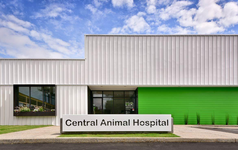 19+ Eastern animal hospital baltimore md images