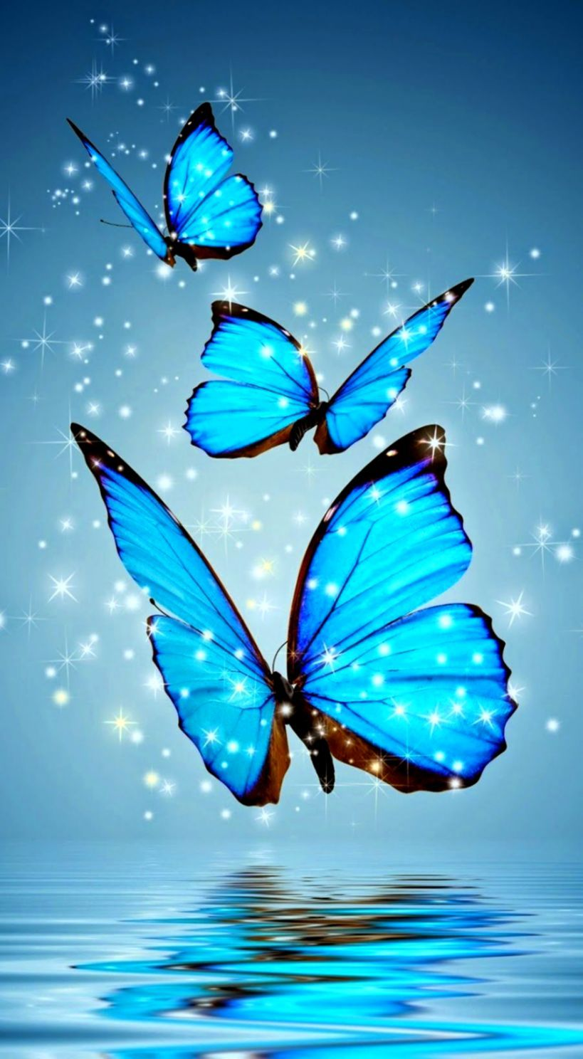 Full Hd Images For Android Mobile Wallpaper Images Girly Cute Wallpaper Hd Is Amazing Hd Android Wallpaper Blue Butterfly Wallpaper Blue Butterfly Wallpaper