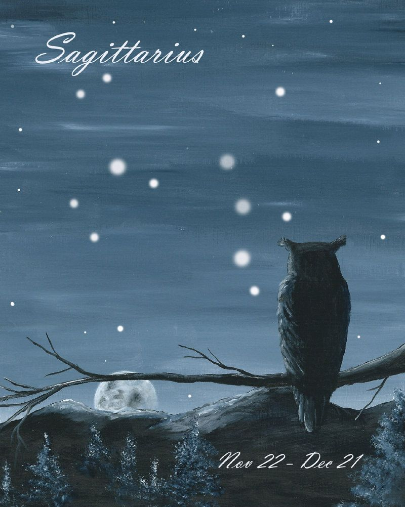 Owl watching the Moon and Stars - Sagittarius by bluewolfart on Etsy