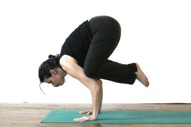 mastering the crow pose  yoga poses  yoga poses yoga