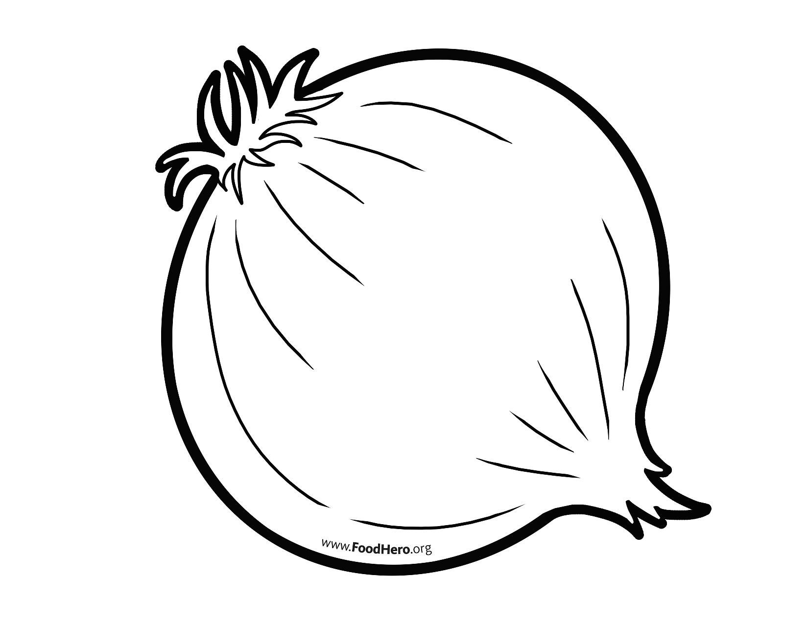 Onion Outline From Foodhero Org Art Drawings For Kids Vegetable