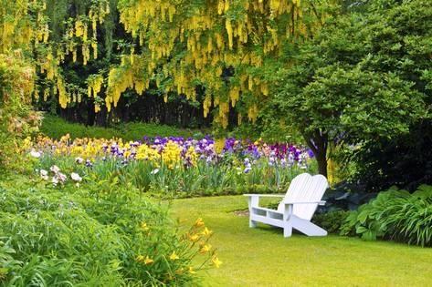 Photographic Print Schreiner Iris Gardens In Salem Oregon By Craig Tuttle 24x16in Front Yard Landscaping Iris Garden Yard Landscaping