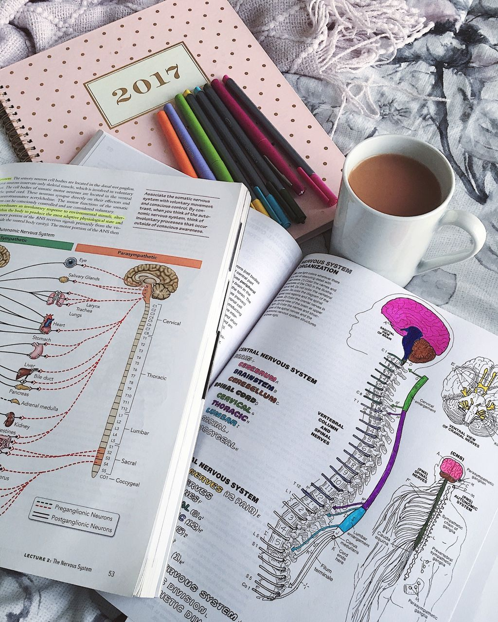 "amreen28: ""Anatomy Coloring Book is helping me study for my upcoming ..."
