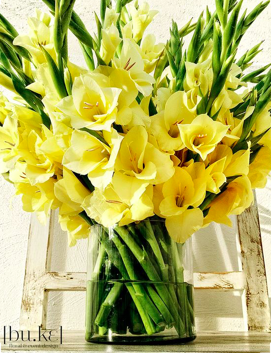 A Pretty Vase Of Gladiolus For August Garden Ideas Pinterest