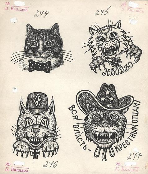 felines with various loyalties