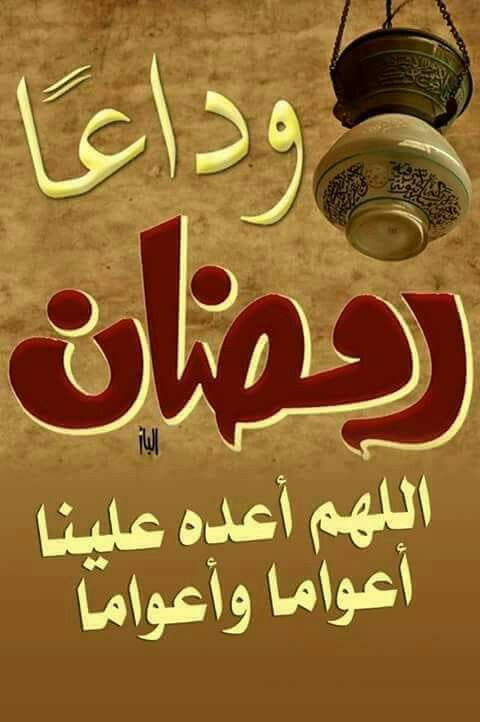 Desertrose إلى اللقاء في العام القادم إن شاء الله Ramadan Ramadan Kareem Kareem