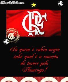 Flamengo Imagem 29041 Fotos De Flamengo Flamengo E Clube De