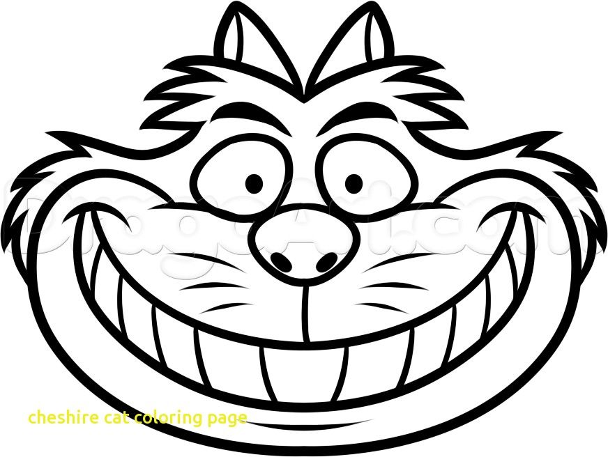 cat face coloring page – totaltracker.co