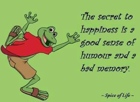 Spice Of Life Quote Enchanting Spice Of Life Quote  Google Search  Funny  Pinterest  Frogs