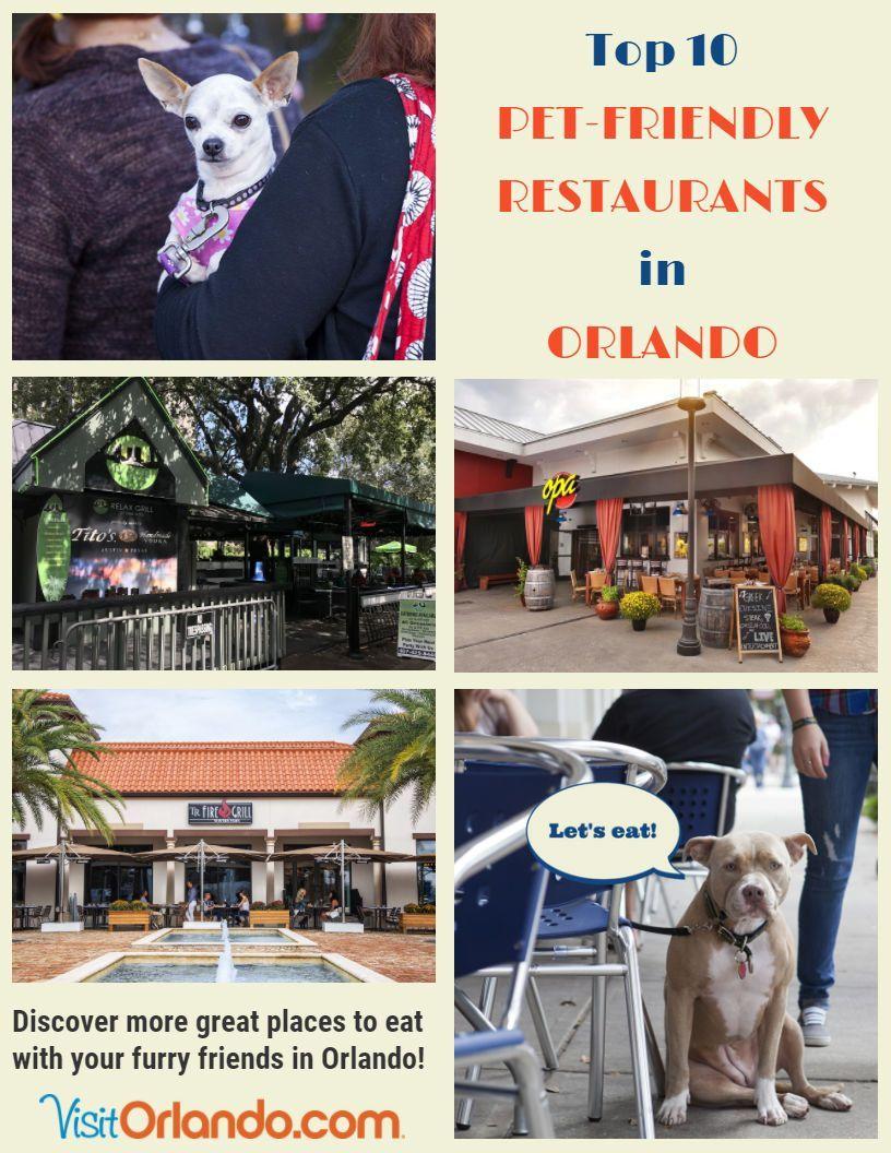 Pet Friendly Restaurants In Orlando In 2020 Dog Friendly Orlando Dog Friendly Vacation Restaurants In Orlando