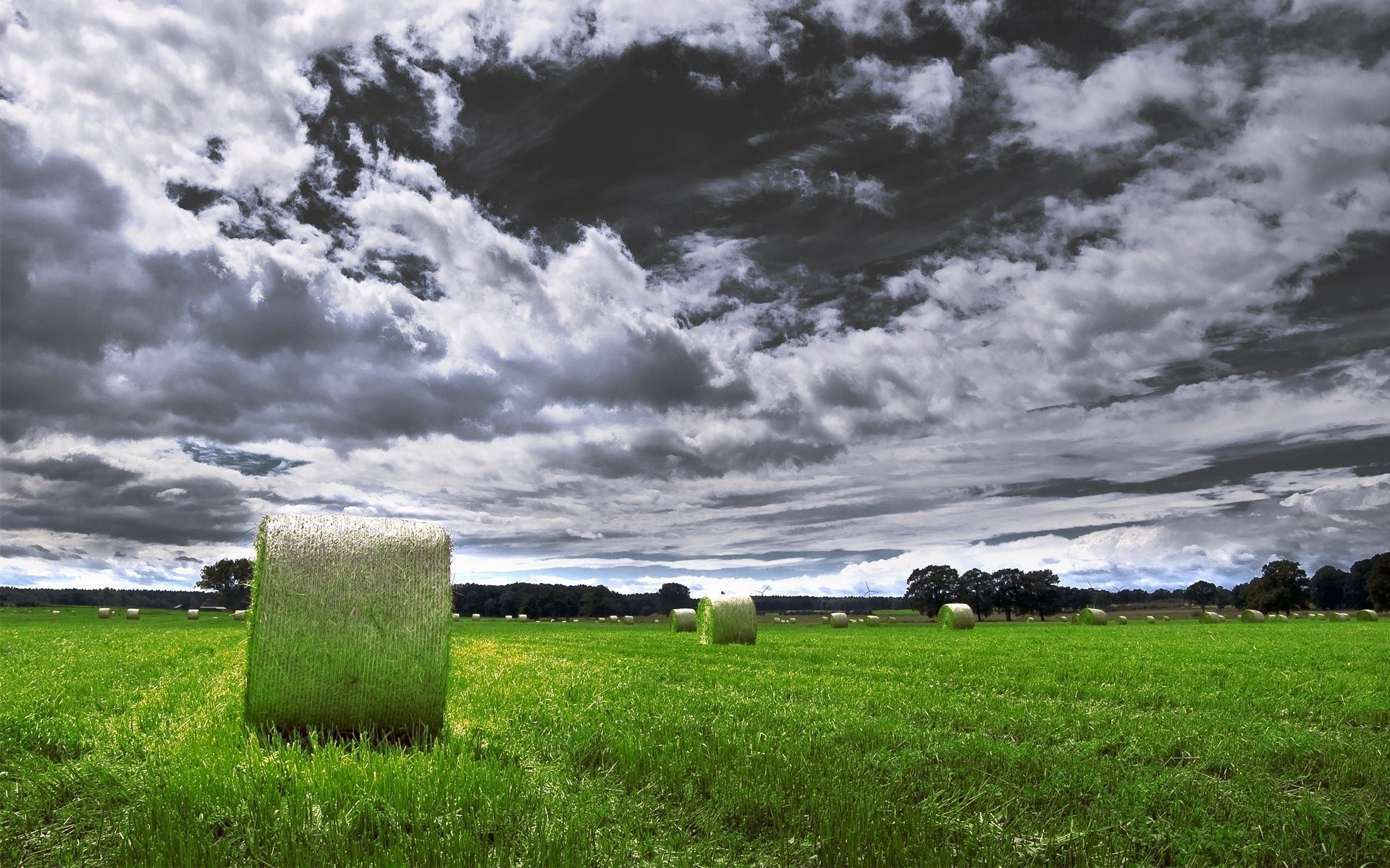 Foto Nature Bright Foto Nature Beaux Fonds D Ecran Paysage