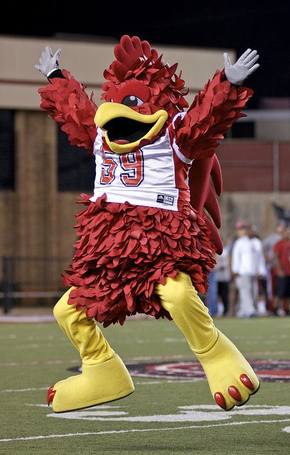 Cocky Jacksonville State S Mascot Jacksonville State Go