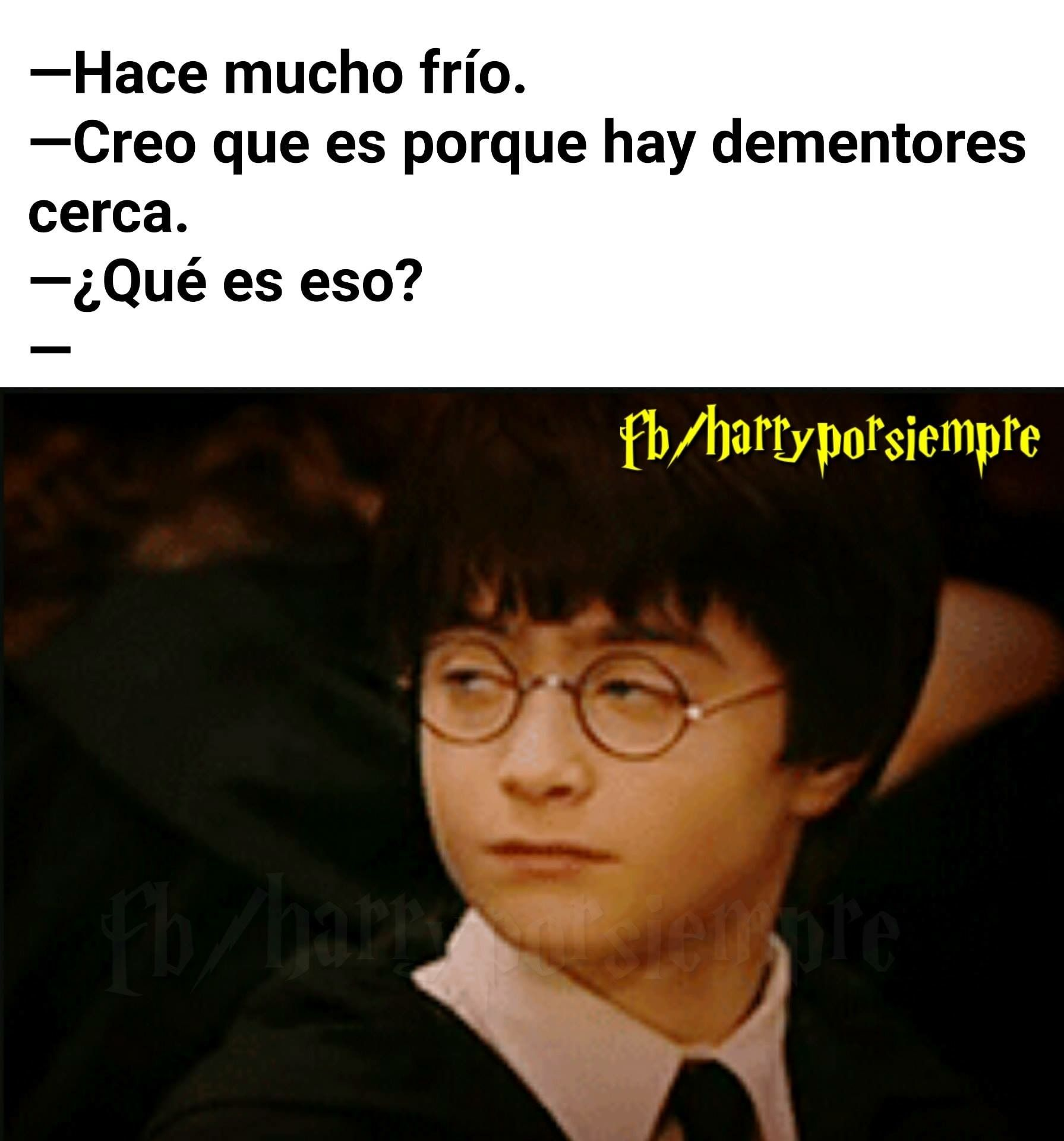 I Translated That In Like 30 Seconds And Finally I Got It And Started Laughing My Family Th Memes De Harry Potter Libros De Harry Potter Harry Potter Gracioso