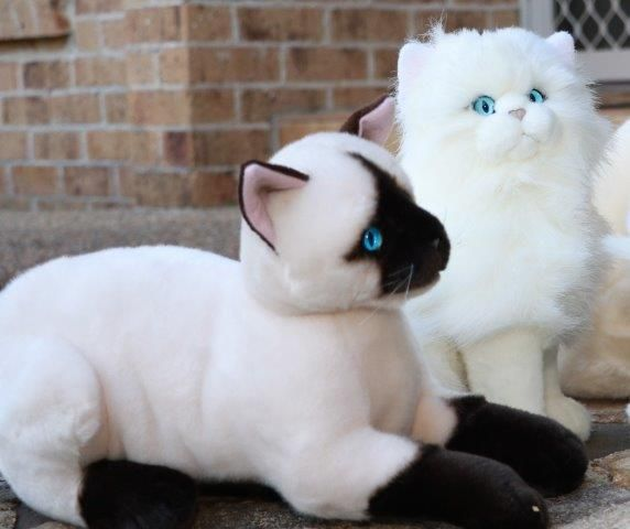 Plush Cat Toy Siamese White Cat Realistic Looking Plushie