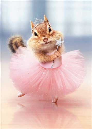 Birthday Greeting Card - Chipmunk Ballerina