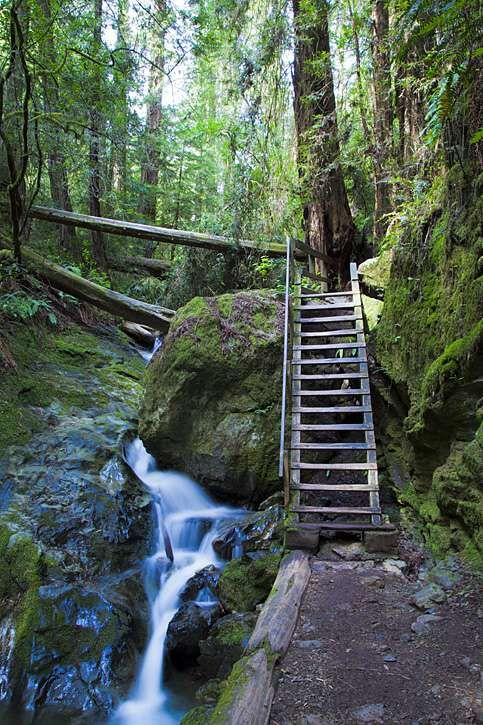 Image result for steep ravine trail
