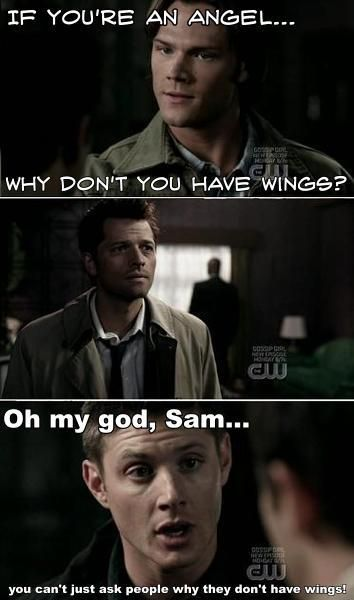 The text is funny, but I just thought something. While Cas did call Sam an abomination and the boy with demon blood, I don't think he ever hated Sam. In fact, if he had then he wouldn't have shaken Sam's hand in a such a way he did in this scene. I just think Cas had always had his doubts and even then in this very episode I think Cas's doubts are expressed.