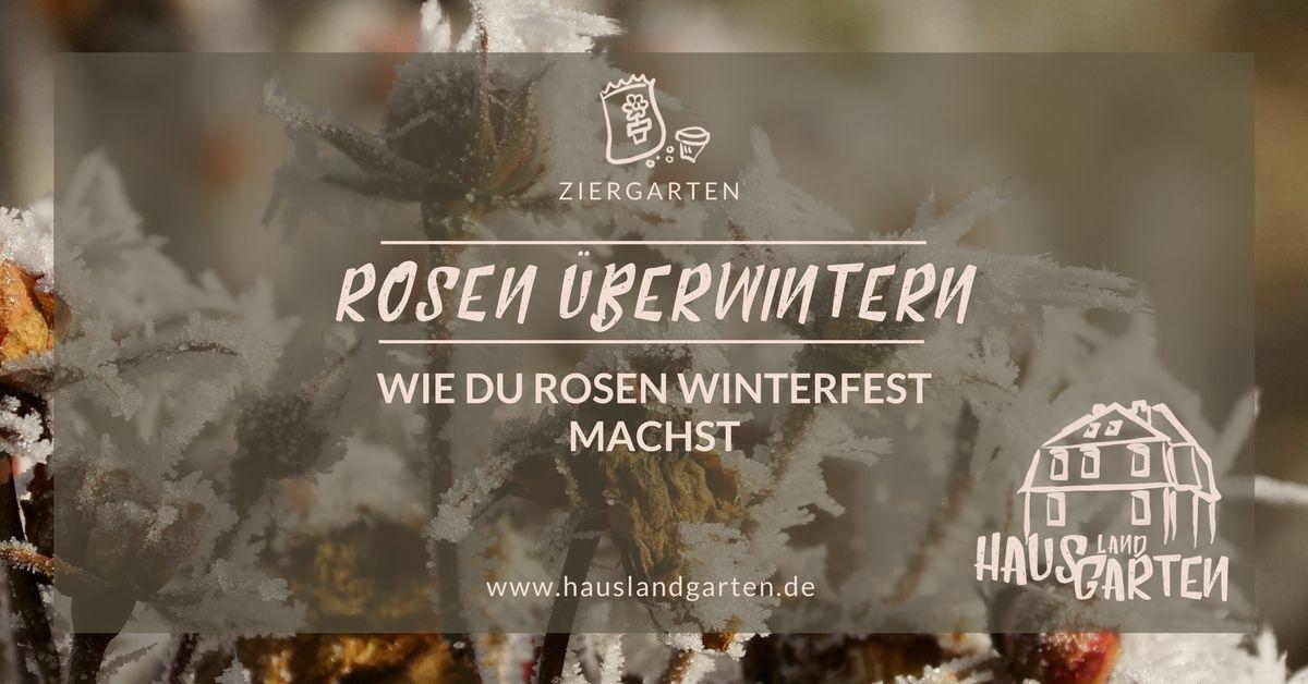 Zum Spätherbst Gehört Die Rosen Winterfest Zu Machen Und So Erzähle - Fliesen winterfest