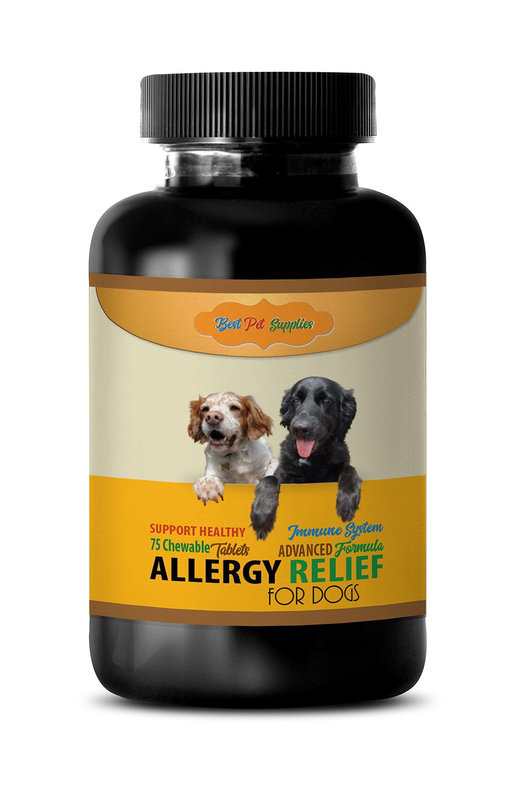best cat food for pet allergies