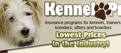 Kennel Pro S Coverage S Are Designed To Meet The Insurance Needs