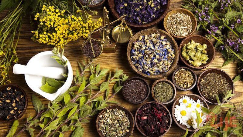 علاج فرط نشاط الغدة الدرقية بالاعشاب مجرب Herbalism Healing Herbs Herbal Medicine