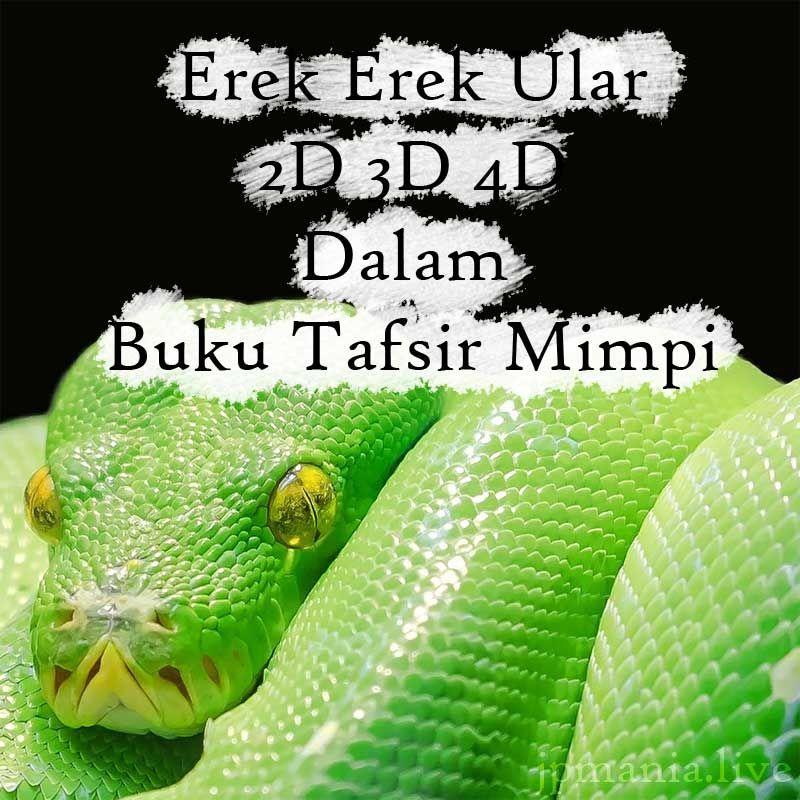 Mimpi pegang ular dalam togel