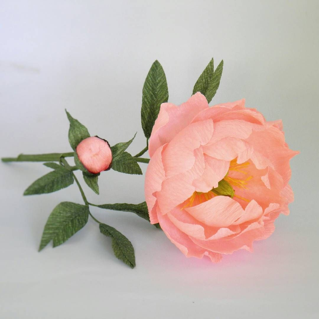 Ever since we launched our paper flower kits in thenmarket the rose ever since we launched our paper flower kits in thenmarket the rose and lisianthus kits mightylinksfo
