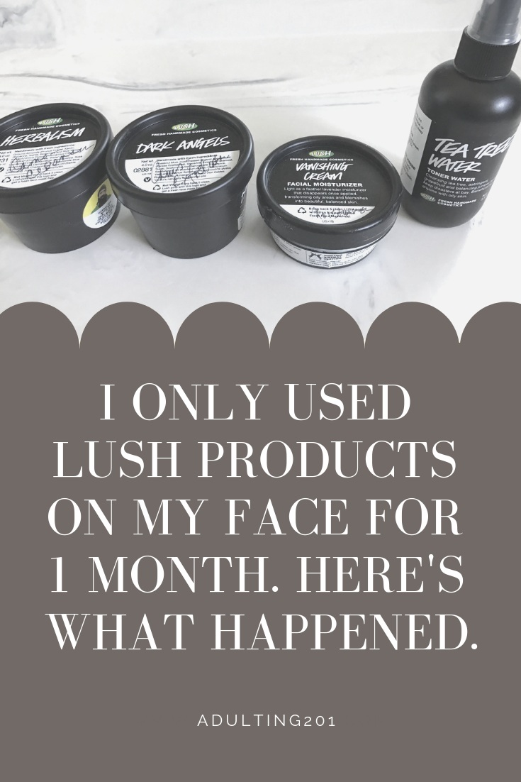 I Only Used Lush Products on my Face for 1 Month. Here's What Happened. — Adulting 201