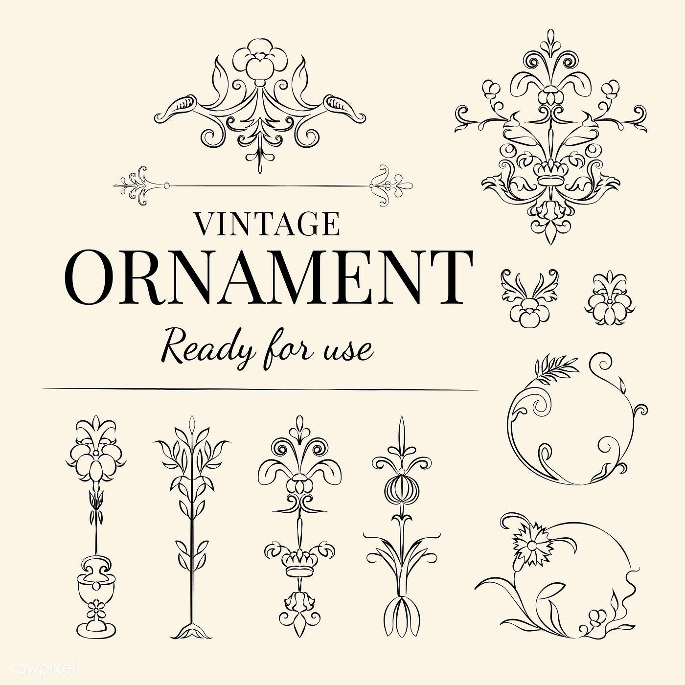 Vintage Flourish Ornament Illustration Free Image By Rawpixel Com In 2020 Vector Free Banner Drawing Mockup Identity