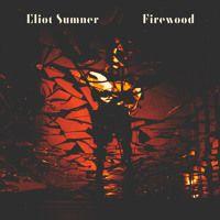 Eliot Sumner - Firewood by Eliot Sumner on SoundCloud