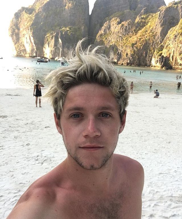 I LOVE YOU NIALL HAPPY BIRTHDAY YOU MEAN SO MUCH TO ME I LOVE YOU NIALLER